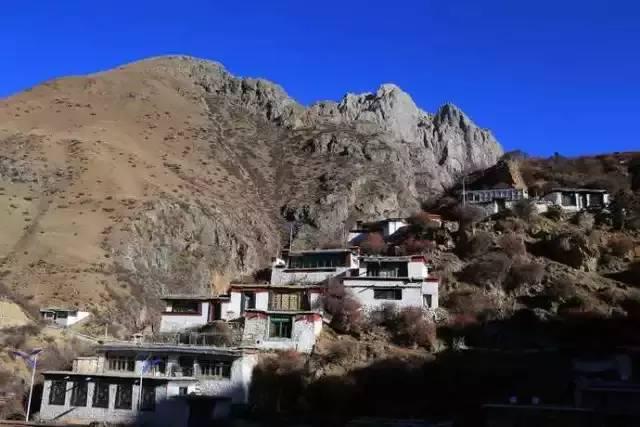 西藏这个温泉里有很多蛇 而且男女都必须裸泡