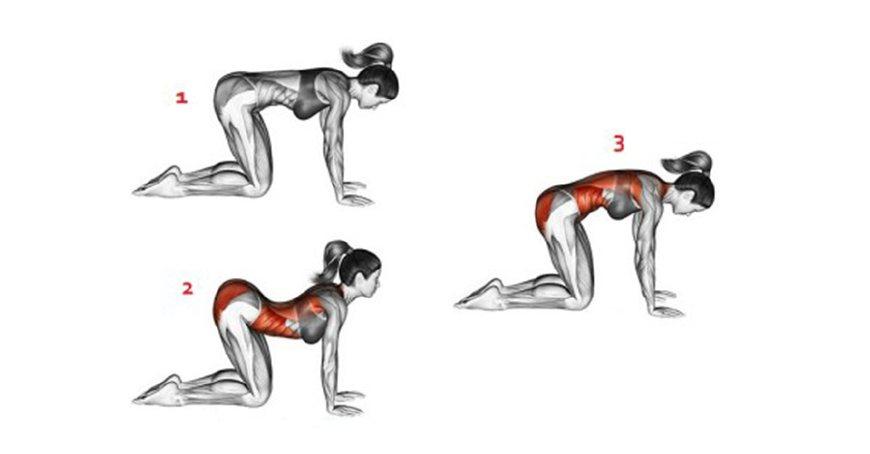 """10个简单瑜伽体式!让你减掉""""大肚腩""""年轻3岁!图片"""