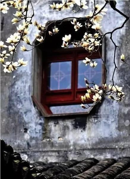 在乡村里,在田园中,还自己一个诗和远方!