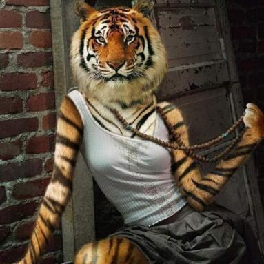 女人是老虎!图片