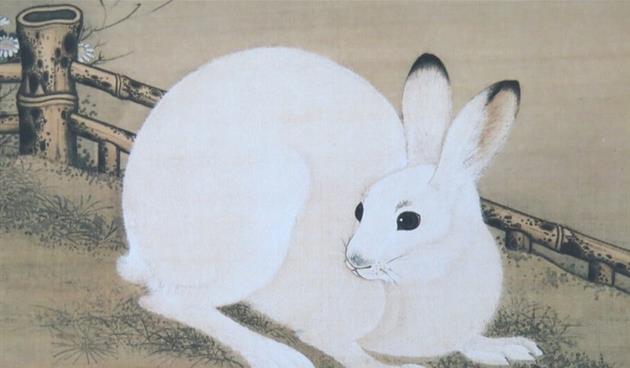 十二生肖中老虎与澳门贵宾厅兔子之间的前程往事