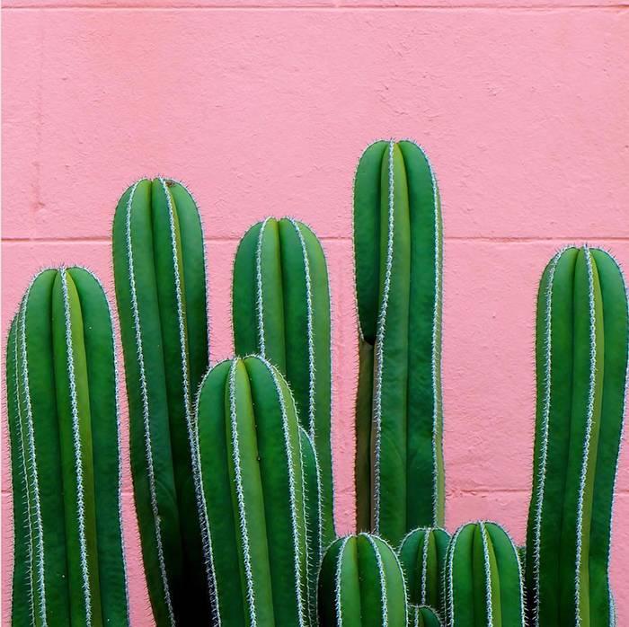 25款春意盎然的草木绿单品推荐!
