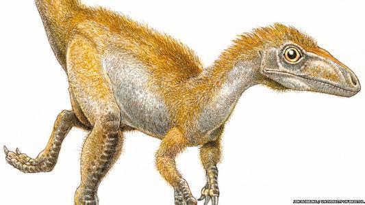 恐龙化��-a9��_\
