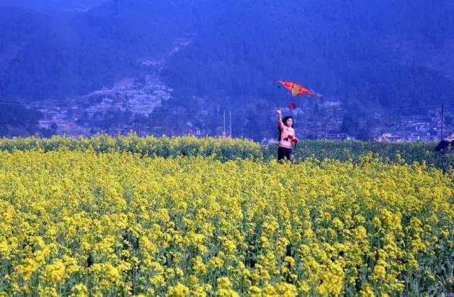 阳春三月,国内5个最佳踏青胜地等你约!图片