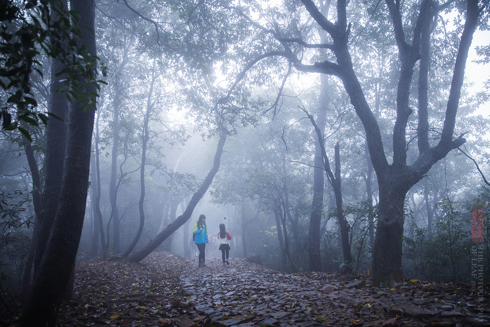 古时挑货郎的近道,如今成了杭州最美登山线路 - 寒残一叶 - 寒残一叶的博客