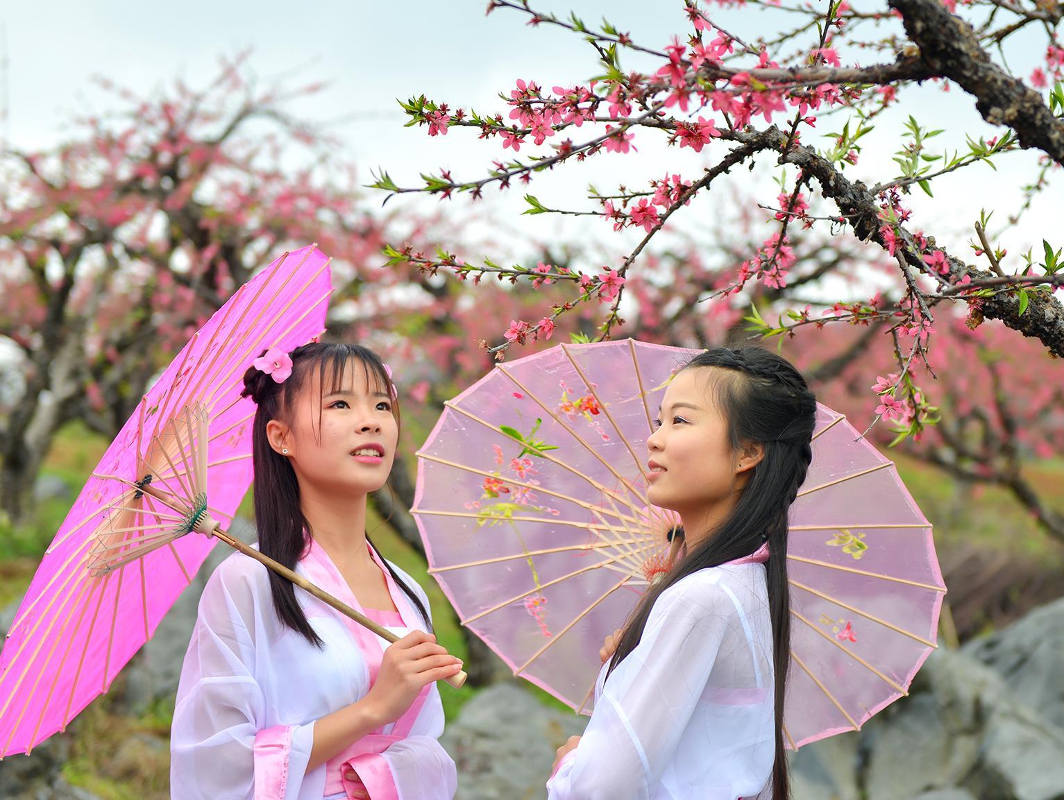 连州桃花节,天降仙女