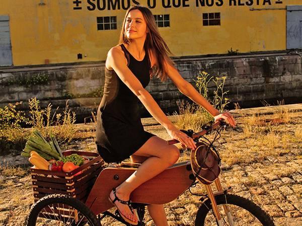 RAIOOO 木质电动三轮车,你会要吗?