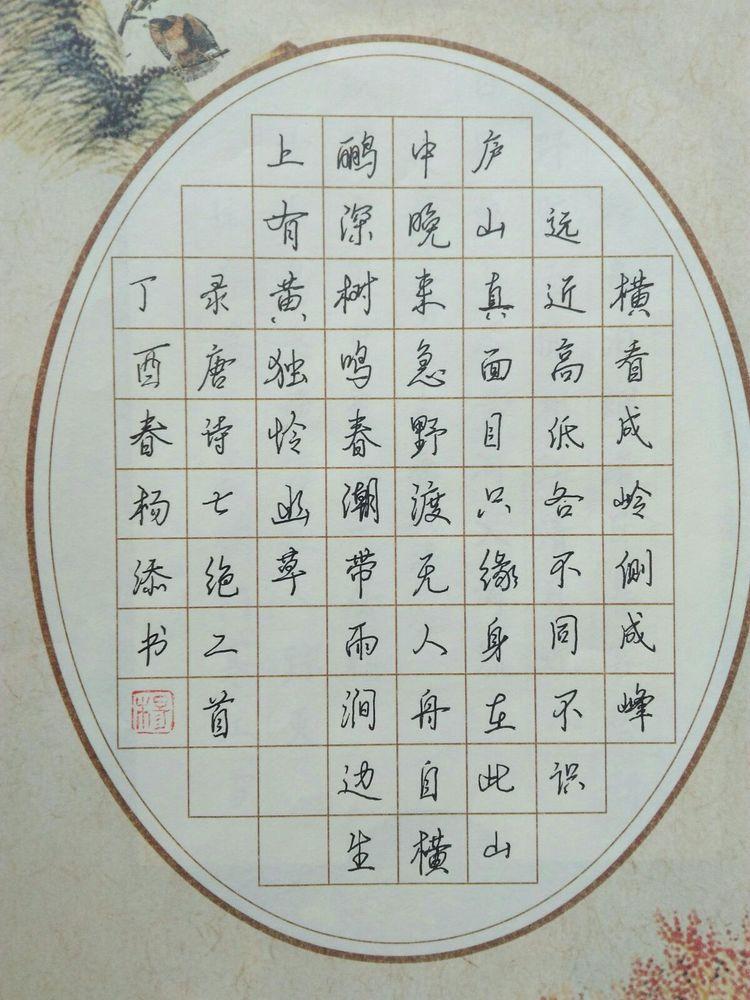 阜新中华路河岸杨添硬笔书法作品欣赏小小学小学图片