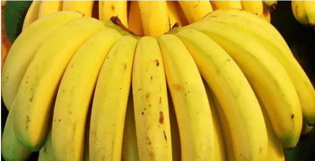 香蕉、酸奶、柿子可不可以空腹吃,空腹吃有什么害呢?