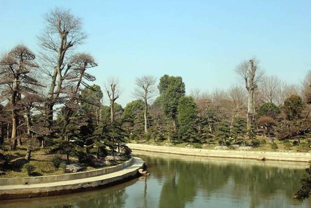 社会 正文  2017年2月28日,2017(第四届)春季苗木供需对接会在如皋