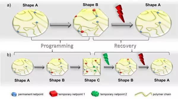 s.最新综述 形状记忆水凝胶 通过结构原理的演变实现亲水性聚合物网