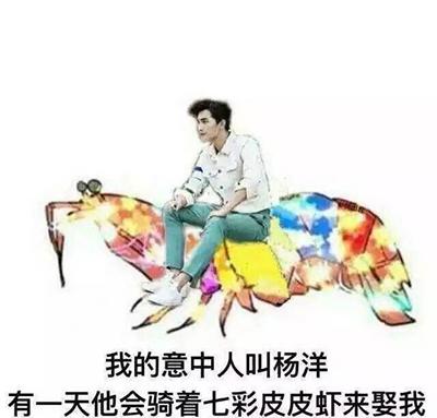 我的意中人叫杨洋他骑着皮皮七彩虾来找我表表情包义彦图片