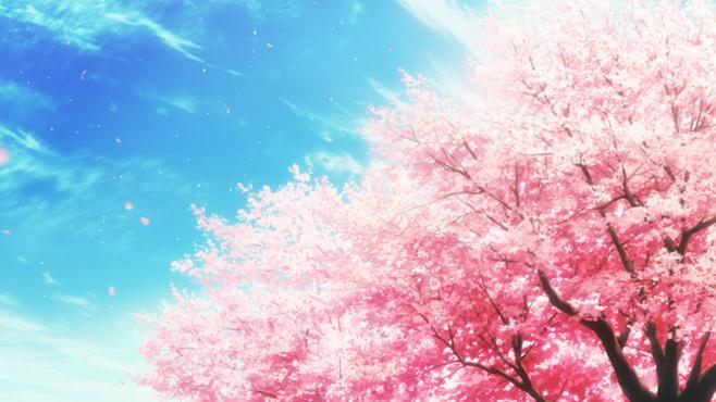 动漫里那些美得让人窒息的樱花唯美风景美图