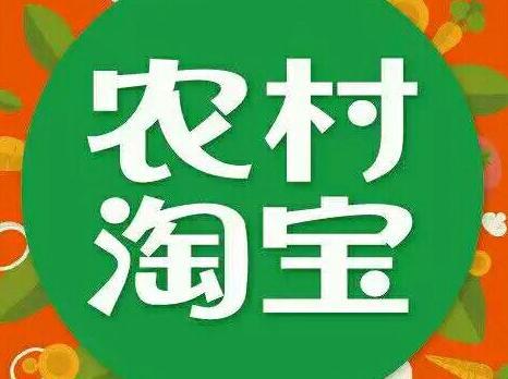 镇平县农村淘宝成县域经济新宠