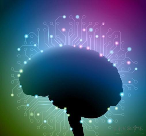 空间思维 记忆力 智商 注意力都很重要 如何提高