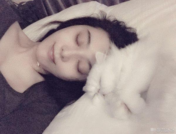 范冰冰真是个睡美人和猫比睡相网友:李晨照的么