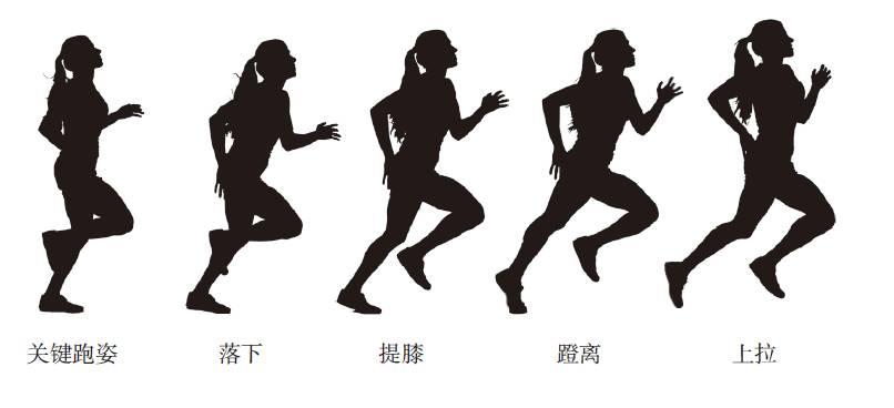 跑步的正确姿势是什么?