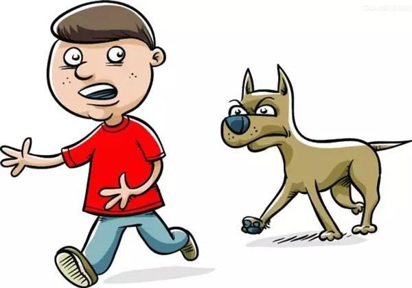 要是养狗也要考个『资格证』,估计世上会少很多悲剧!图片