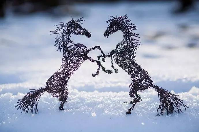 艺术家用铁丝来勾画各种各样的小动物,这些充满创意的小东西,似乎让