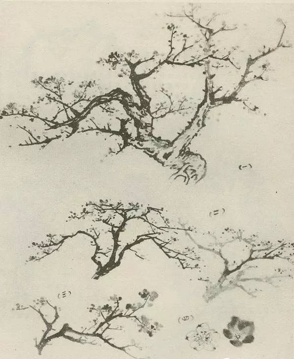 国画 简笔画 手绘 线稿 597_729图片