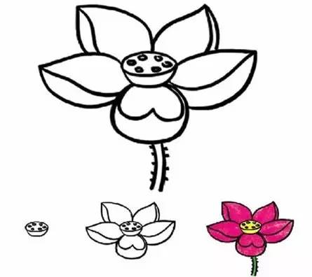 荷叶植物cad平面图