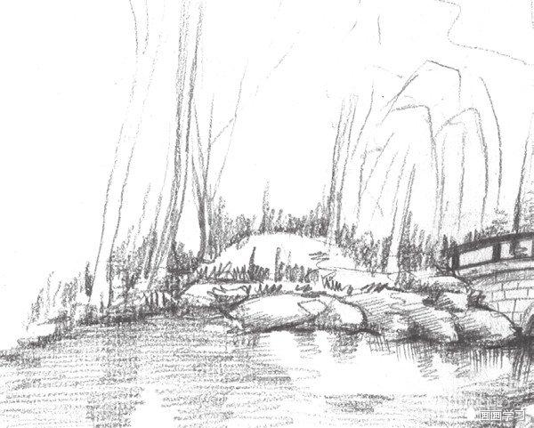 如何学素描 素描植物园的绘画教程