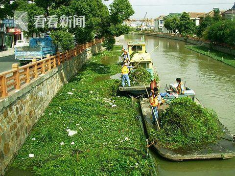 浦东新区整治70条黑臭河道