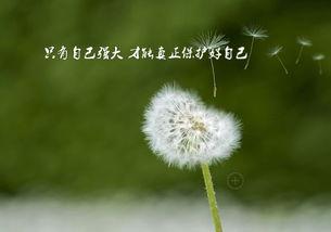 心灵励志语录荟萃二(人民日报微信客户端)