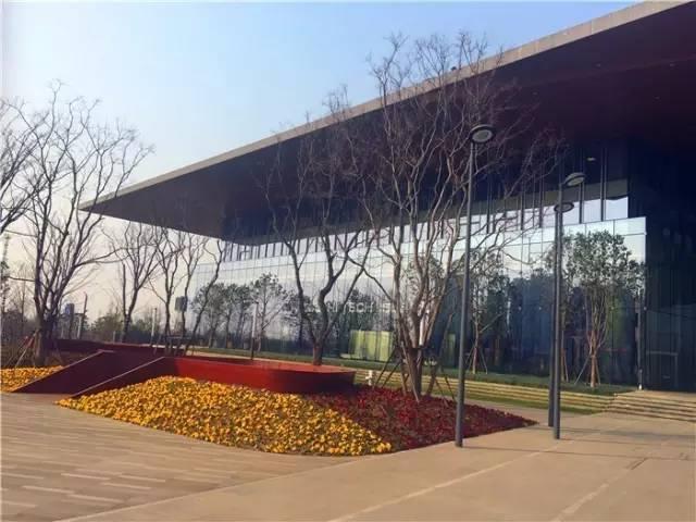 实探房价奔4万/平的江心洲:厦门新天地下江岛建筑设计院有几家图片