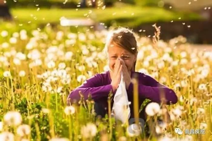 春花烂漫,小心花粉过敏