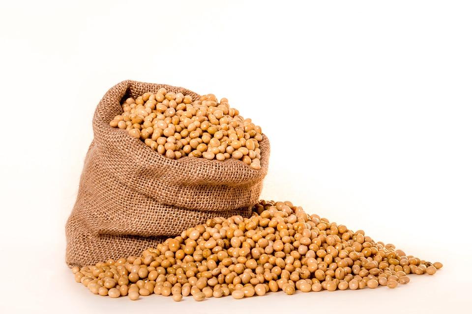 吃大豆为啥会肚子胀?原来是这种东西在捣乱