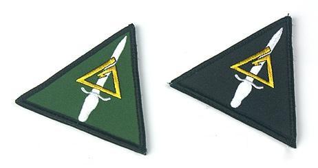 三角洲部队的臂章图片