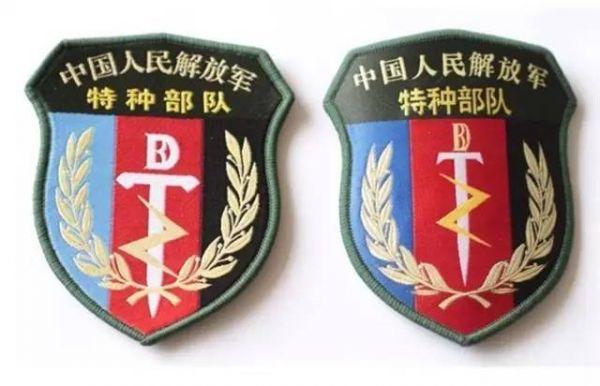中外特种部队标示符号大比拼,中国遥遥领先图片