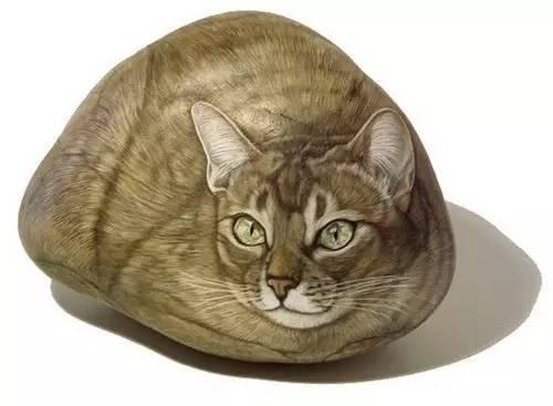 你确定这是石头?打死我都不信