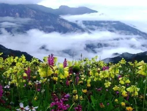 """川西最美的空中大花园!人少名气小,美得遗世独立"""""""