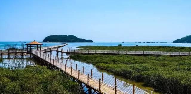 阳江人均_阳江海陵岛