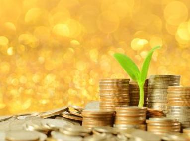 绿藻积分是2017年财富财务自由的最好时机!