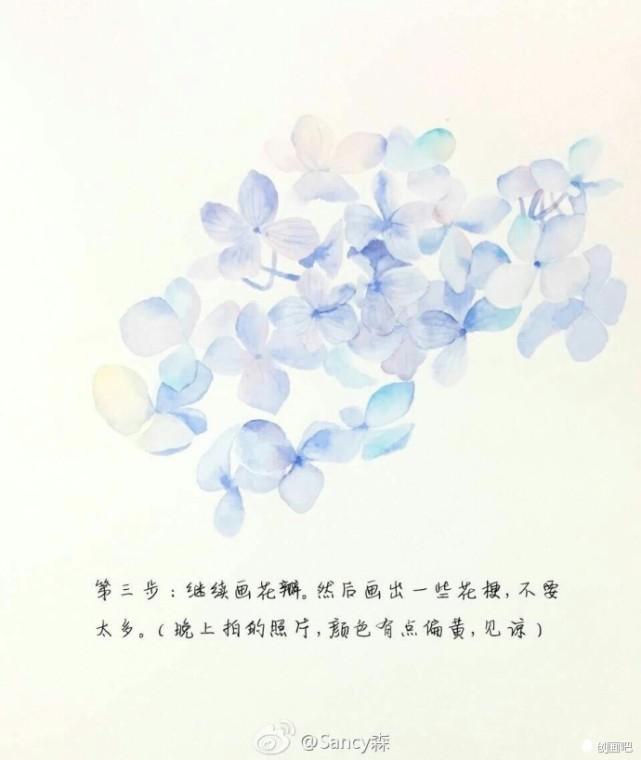 手绘教程——清新淡雅的绣球花详细教~丨@sancy森