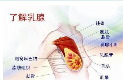 乳腺增生的症状有哪些?乳腺增生的发病原因?
