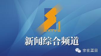 电视剧《白鹿原》为什么不在陕西电视台播放?原因竟是 行业新闻 丰雄广告第2张