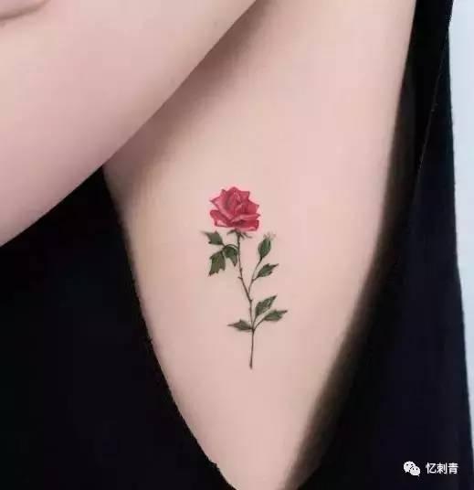 纹身 在身上纹一朵永不凋谢的玫瑰,会否成为跟情人之间的小情趣图片