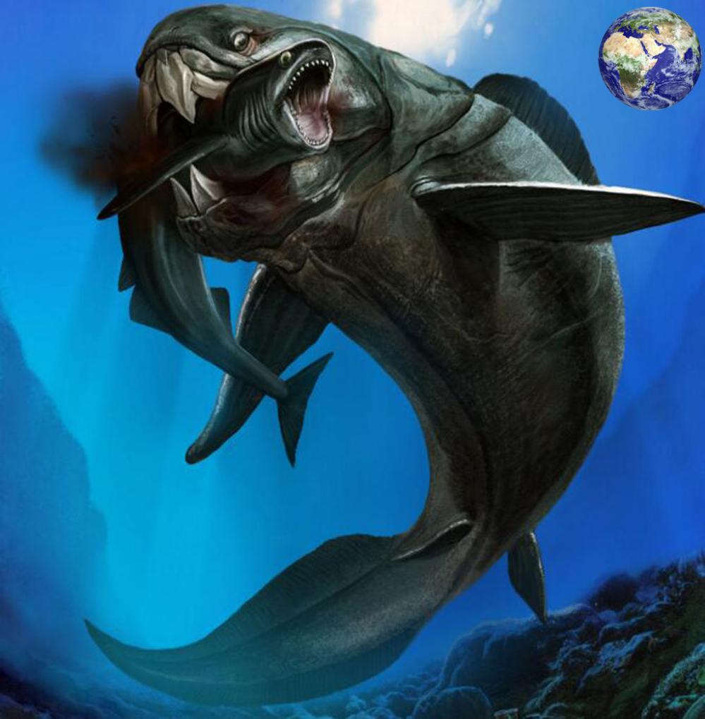 一口能将鲨鱼拦腰截断