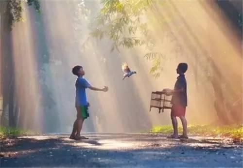 不进小人圈子,也不让小人深入自己的领域和心灵图片