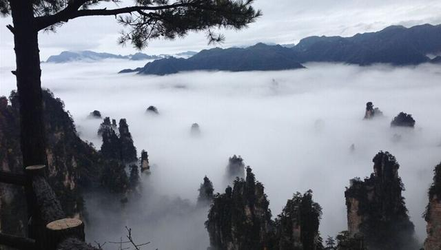 重庆至张家界风景区三天自助游攻略
