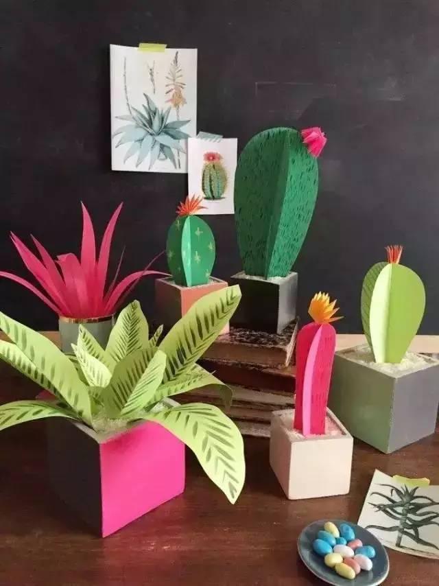 幼儿园植物角怎么做?图片