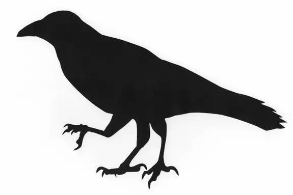 被后羿射下来的那只三足乌鸦,到日本就成了引路灵鸟 八咫乌