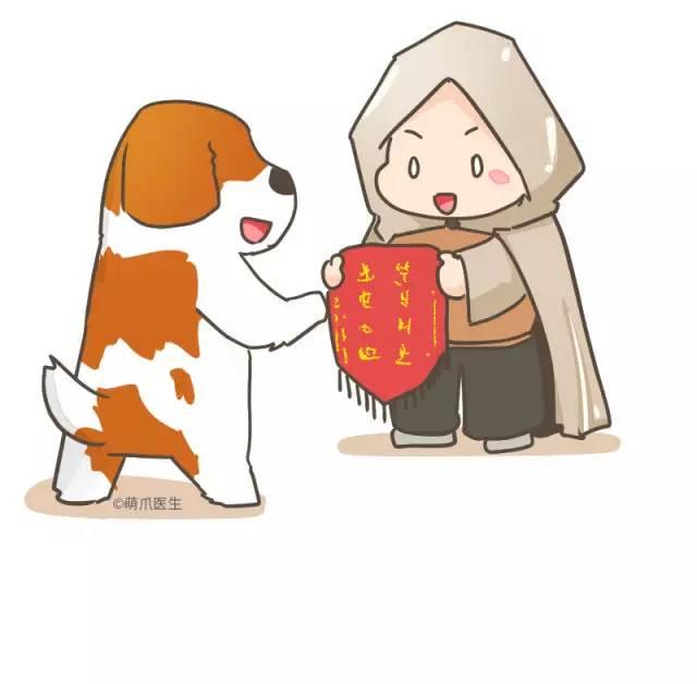 「犬中绅士」,「雪山搜救英雄」,善良勇敢的圣伯纳犬,是瑞士国宝级别图片