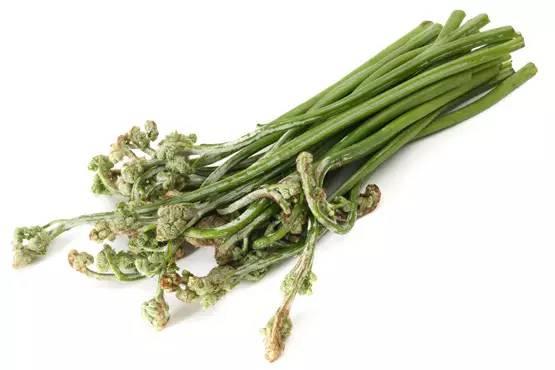 【组图】草头荠菜香椿槐花…春天,都有哪些野fitique瘦身胶囊图片
