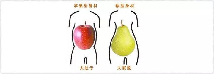 鸭梨型身材_苹果型和梨形身材,哪个更健康?