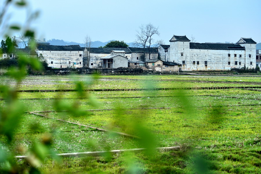 河源林寨古村,遍寻不着的故乡记忆 - TIM生命过客 - TIM生命过客的博客